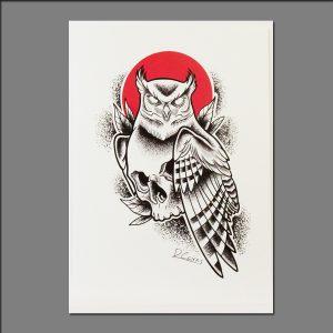 Print of skull owl by David